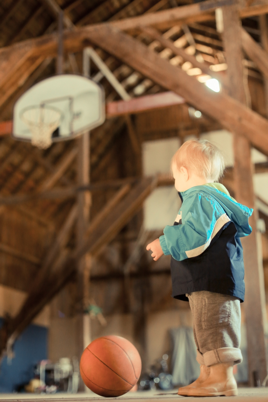 Gigi's Joy: basketball in the barn