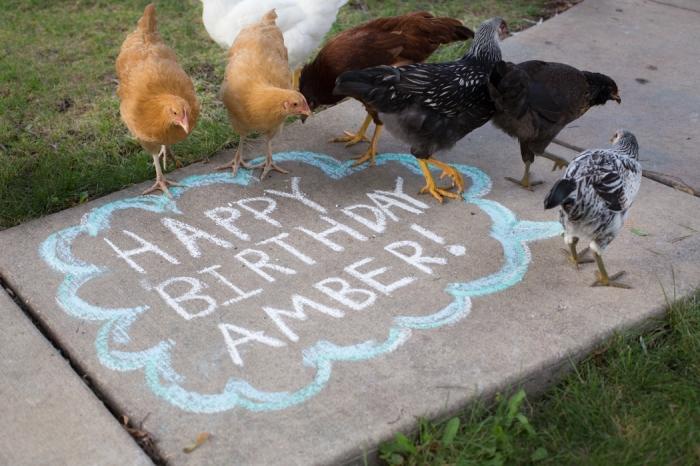 Gigi's Joy: speech bubble sidewalk chalk chicken