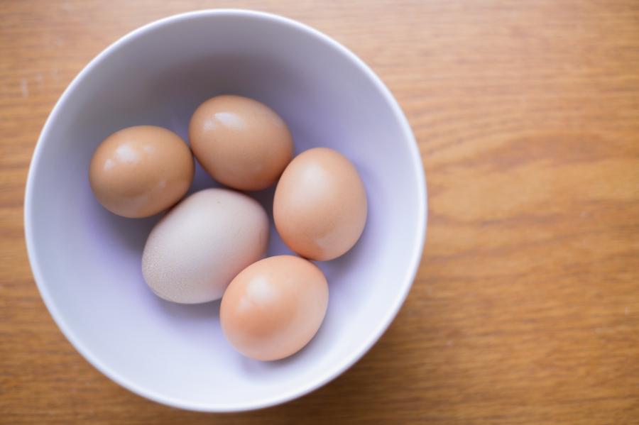 Gigi's Joy Photography: eggs