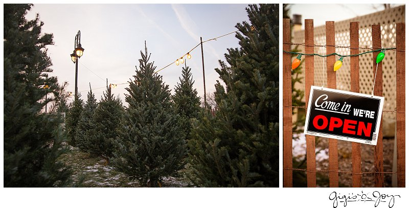 Gigi's Joy Photography: Union Grove Event Photographe Kiwanis Tree Lot