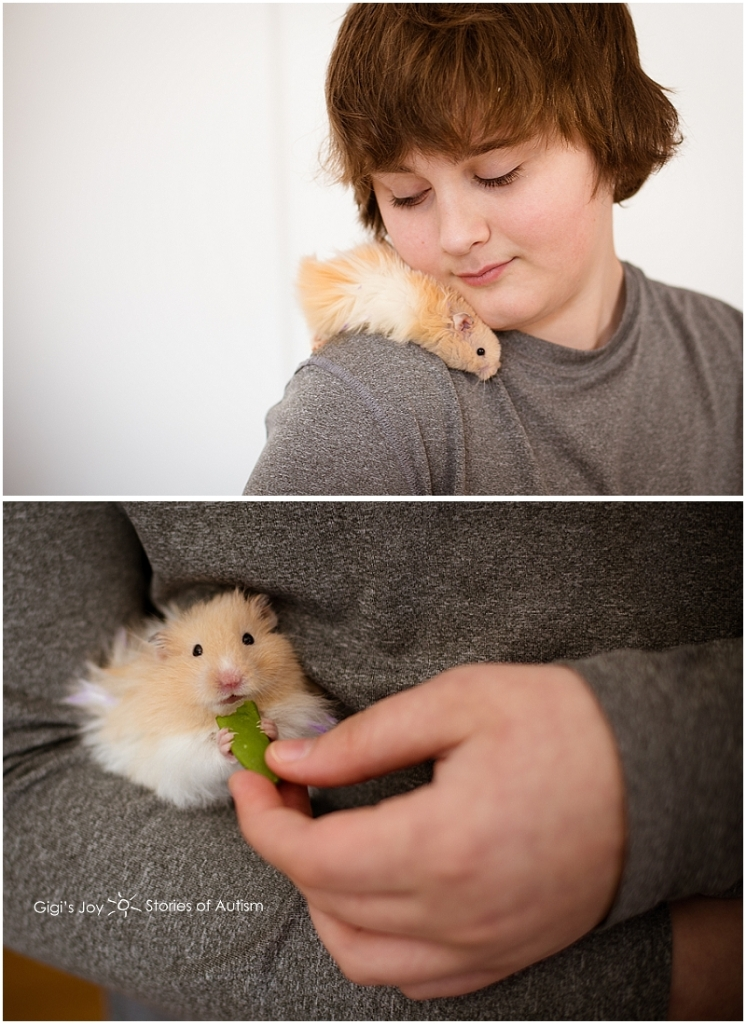 Gigi's Joy Photography: Stories of Autism Special Needs Photographer, mother child Waterford hamster