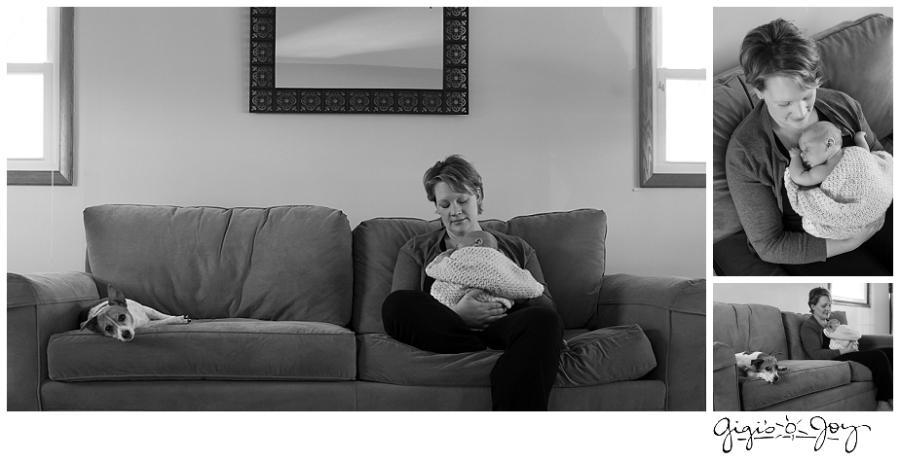 Gigi's Joy Photography: Baby Lifestyle Photographer Milwaukee dog pet
