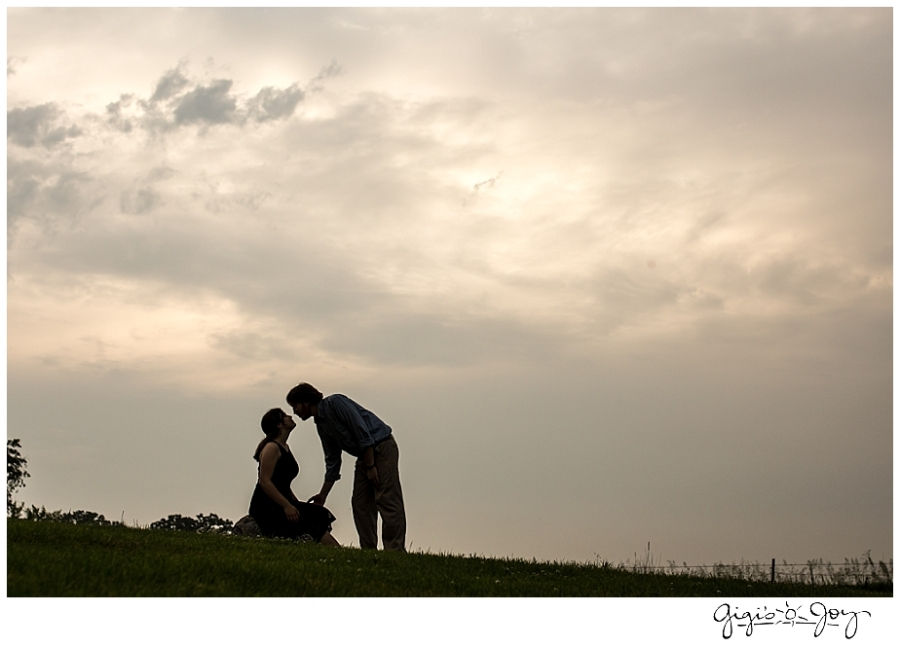 Gigi's Joy Photography: Engagement Photographer Kenosha