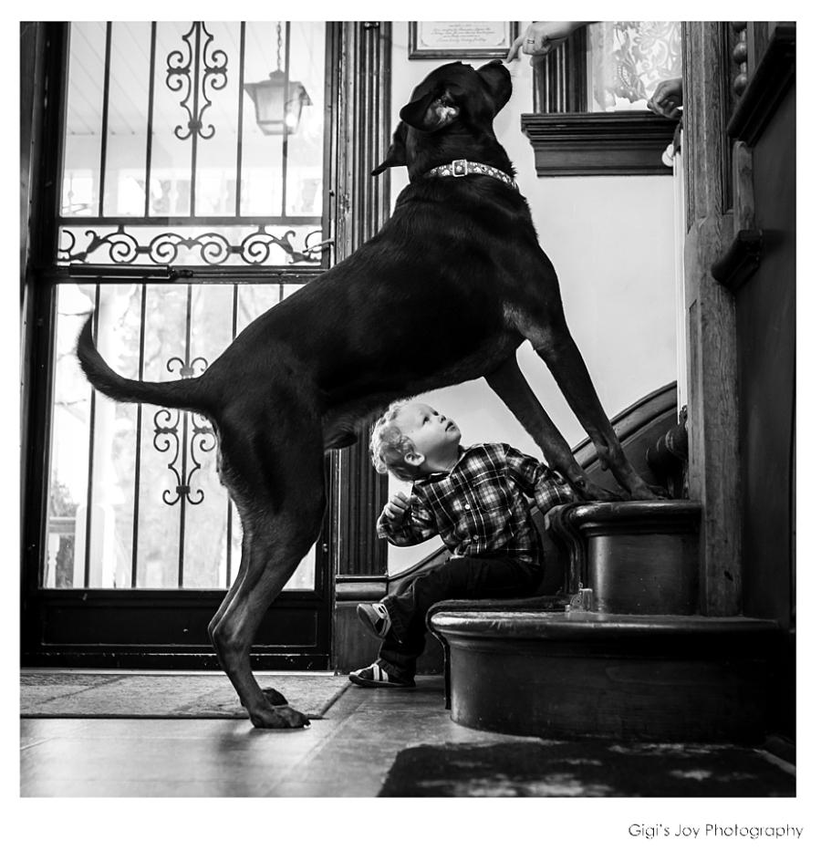 Gigi's Joy Photography: Racine Family Photographer Documentary