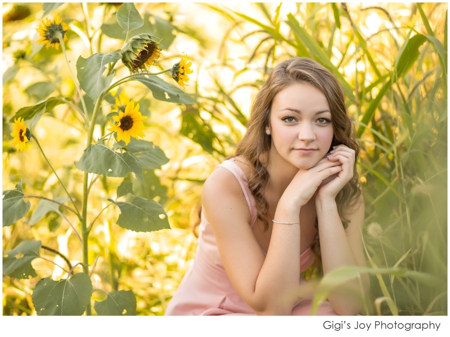 Gigi's Joy Photography: Racine Senior Photographer High School